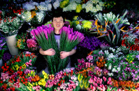 Korean Flower Vendor